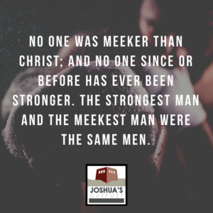 Meekness: A Correction on Strength